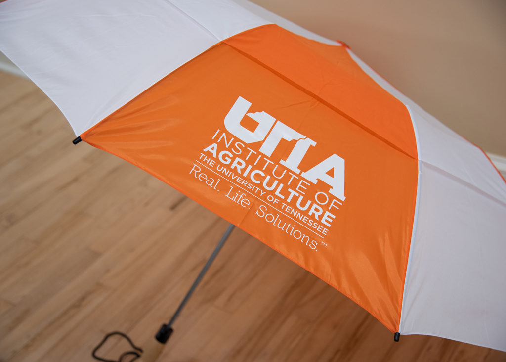 Picture of orange and white umbrellas with wood handle